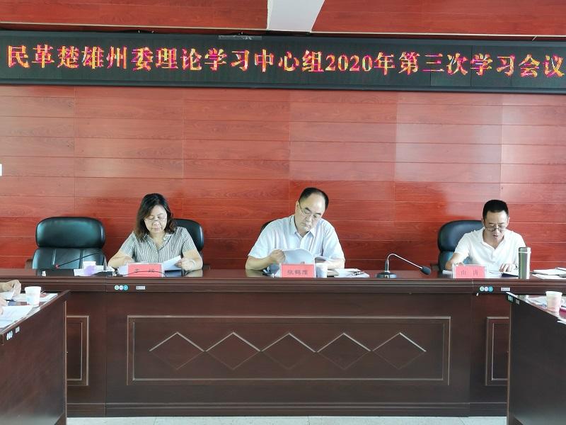 民革楚雄州委:学习讲话精神  凝聚政治共识